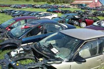 Salvage Cars For Sale In Fort Collins